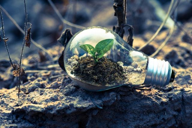 Arvete ökoloogiline jalajälg